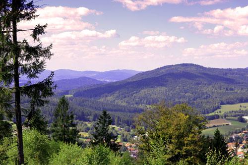 Bayerischer Wald – The Bavarian Forest
